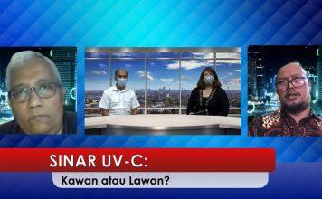 diskusi Signify lampu UV-C, Signify Indonesia