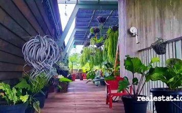 green architecture arsitektur hijau gonku nursery kenari djaja realestat.id dok
