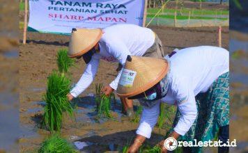 Sharp Mapan Tingkatkan Kesejahteraan Petani Di Masa Pandemi realestat.id dok