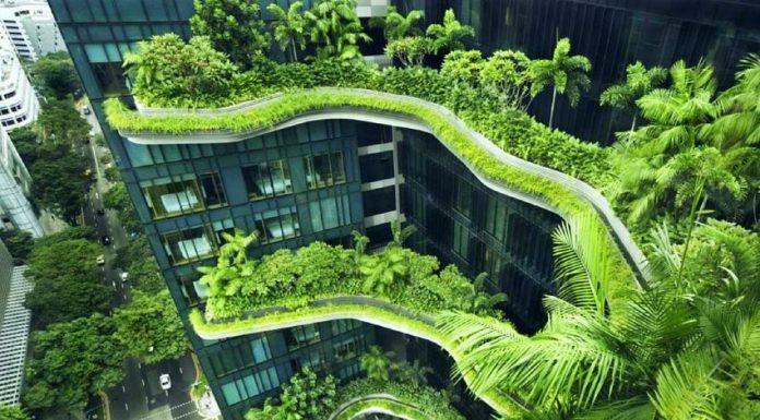 gedung ramah lingkungan green building singapura world gbc realestat.id dok